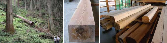木材、無垢の木